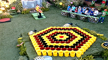 Big Brother 11 Buzzworthy HoH Competition