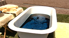 Big Brother All Stars - Blueberry bath