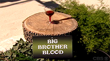 Big Brother 8 - Shot for Shot veto competition